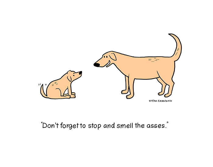 Don't forget to stop and smell the asses.