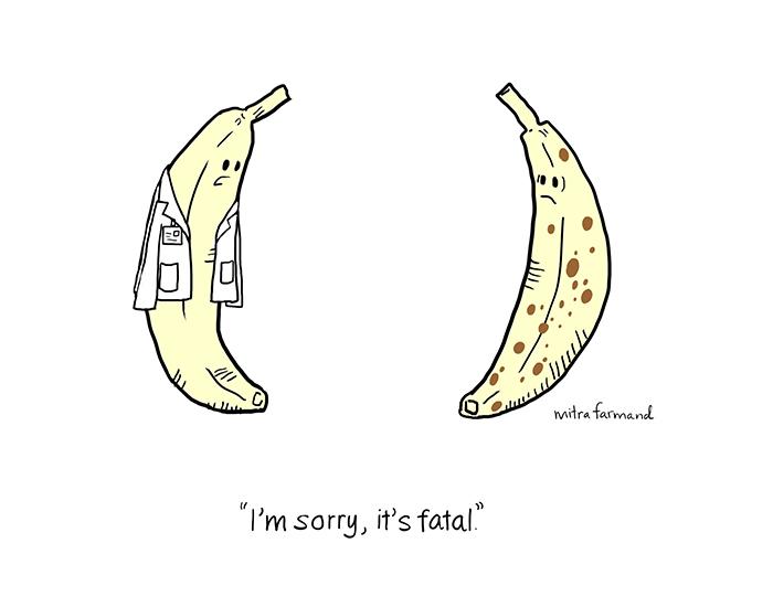 I'm sorry, it's fatal.
