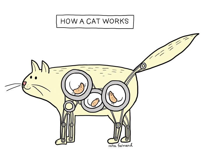 How a cat works.