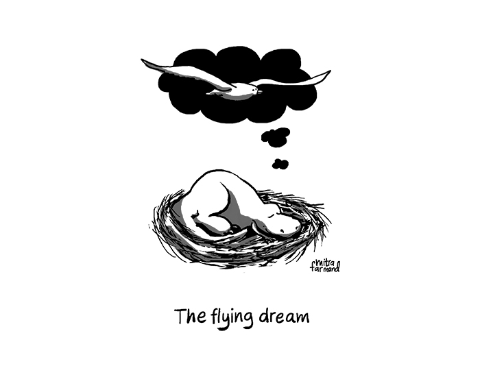 The flying dream.